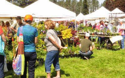 Join Us! The Camas Garden Festival