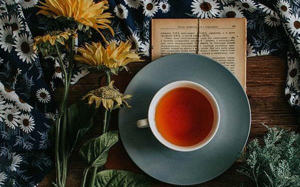 Delicious Herbal Teas